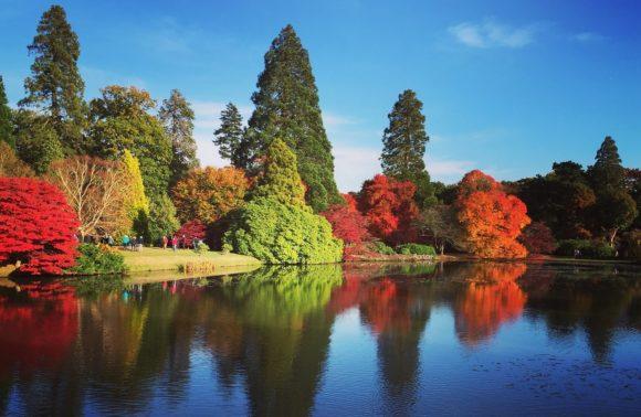 Au cœur des jardins Anglais