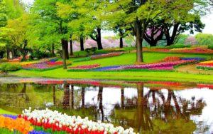Keukenhof hollande parc